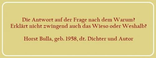 Bildzitat - Die Antwort auf der Frage nach dem Warum - Zitat von Horst Bulla