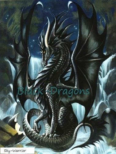 Black-Dragons