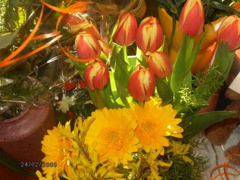 Blumen2