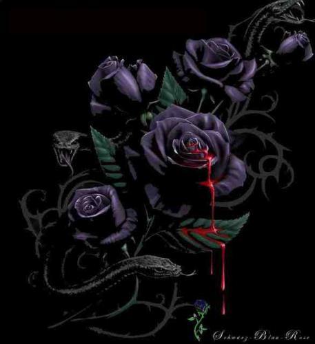 Blut Rosen