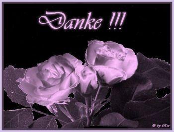 Danke mit einer Rose