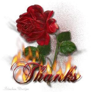 Danke Rose