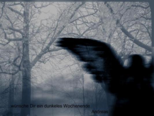 Dark WE