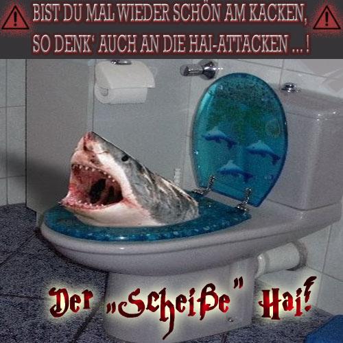 """Der \""""Scheiße\"""" Hai"""