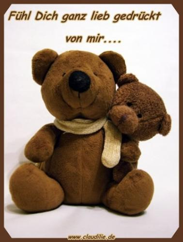 drück teddy