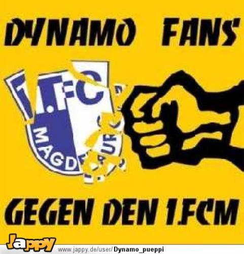 dynamo gegen 1 FCM