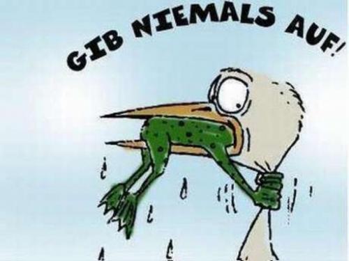 http://gb-pics24.com/gbpics/gib-niemals-auf-24207.jpg