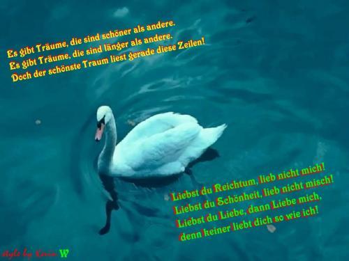LiebeSchwan