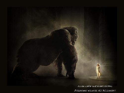 Mein King Kong