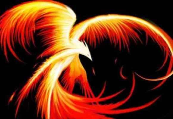 phoenix spielen