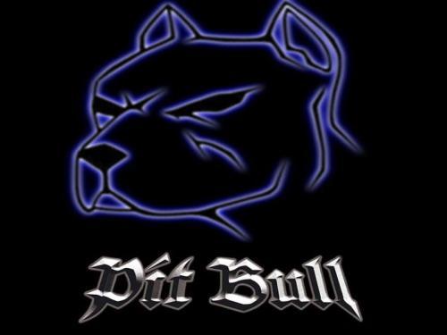 pittbull