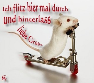 Rattenflitzer