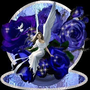 runder engel