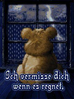 teddy regen