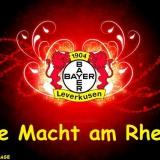 Bayer 04