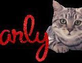 Charly,s Bild2