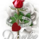 Danke mit einer Rose #2