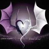 Drachen Liebe