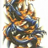 drachen2