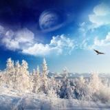 Dream-winter