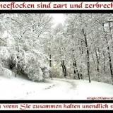 DW**Schneeflocken