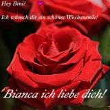 Eine Rose für Bini!