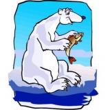 Eisbären fressen Haie