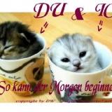 Frühstück DW