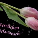 Glueckwunsch1