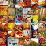 Herbst_Mosaik