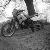 KMX 125