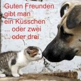 Küsschen-Freund