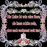 liebe ist wie eine rose