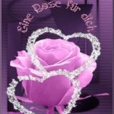 Rose für dich