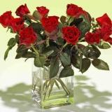 rose in der vase