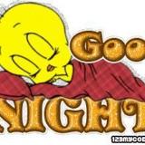 Tweety Gute Nacht