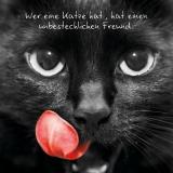 wer eine katze...