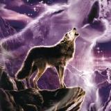Wolfsgeheule