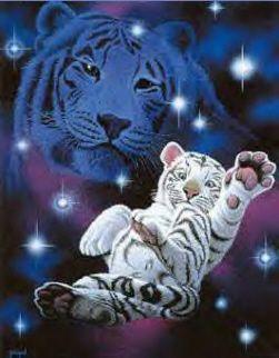 Tiger Kostenlose Gästebuchbilder