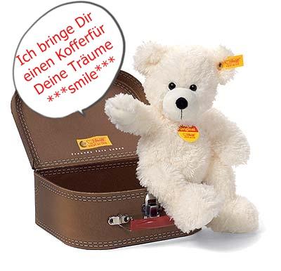 Traumkoffer mit Bär