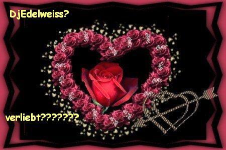 verliebt ?