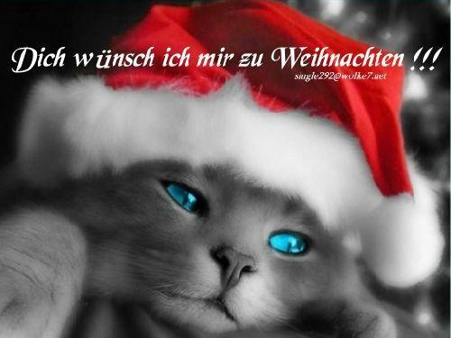 Weihnachten DW