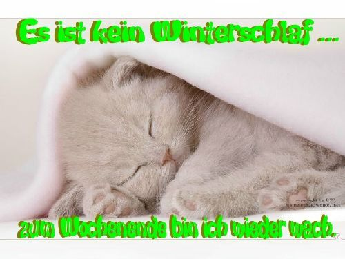 WoCHenEnDe ** DW